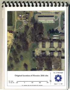 Aerial view of the location where the elm tree grew (Image by courtesy of City of Bloomington)